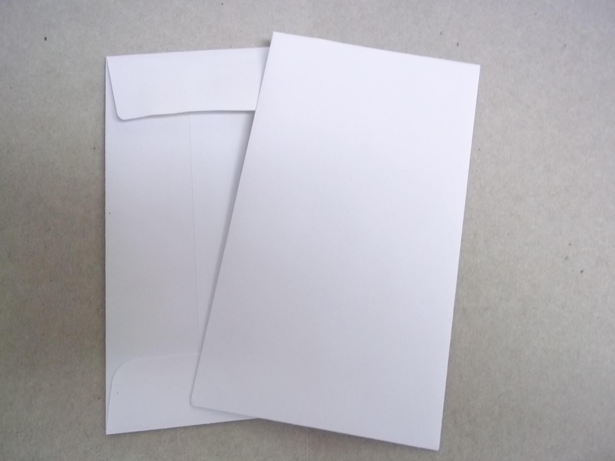 EV208 Blank Job Envelopes- box of 500-White